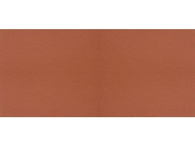 Кислотоупорная плитка Euramic - «361 Naturrot арт.1100»