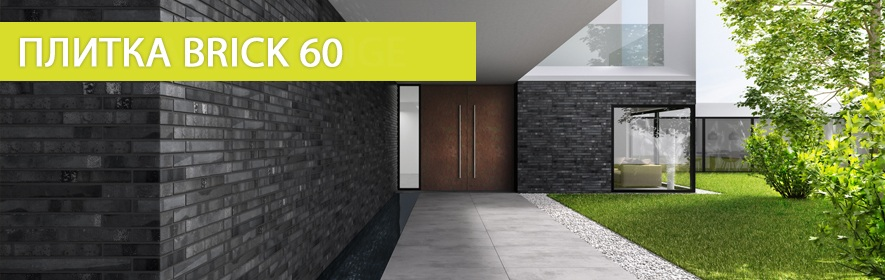Brick 60